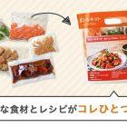 おいしいご飯がお手軽に!dミールキット【評判とトライアルキットを試した感想】